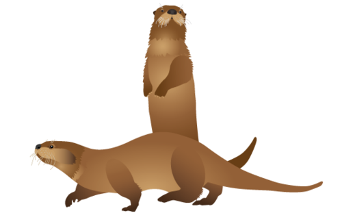 Otter-Artwork-2